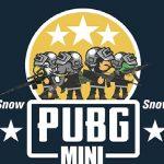 PUBG Mini Snow Multiplayer
