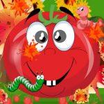 Tomato Explosion